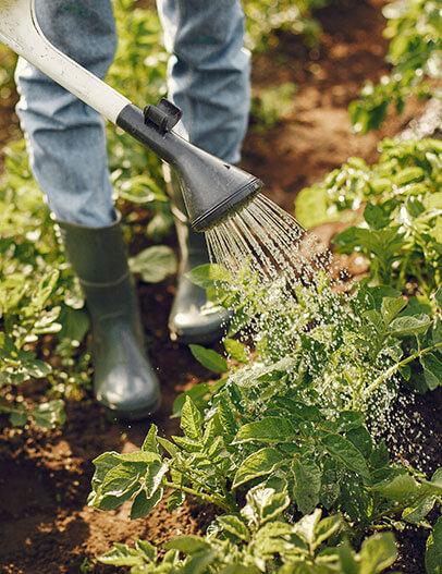 ML63, urejanje in vzdrževanje okolice. Košnja in prezračevanje zelenic. Košnja trave.